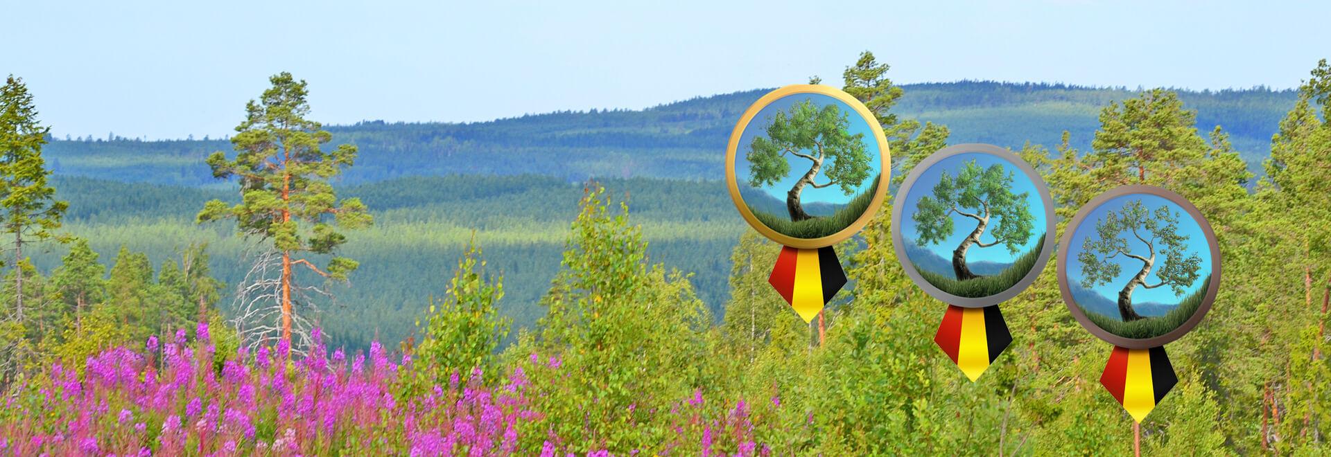 Sundfrakt kan vinna årets Miljöstrategipris 2019!